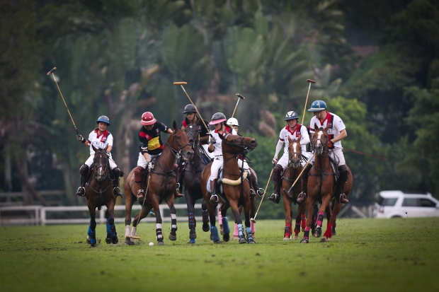 British Polo Day, Singapore