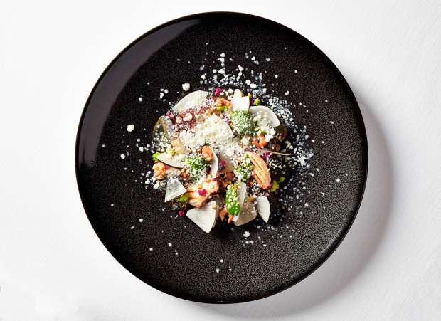 Marinated mackerel and grilled octopus, brown shrimps jelly, shizo paste and butter milk lime granita.